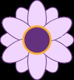 Casey's Circle